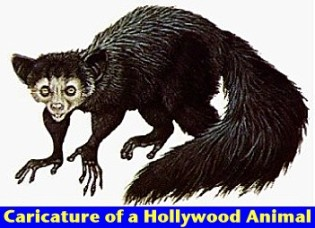 hollywood_animal